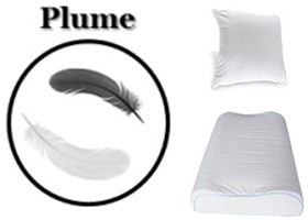 oreiller plume oreiller plume pas cher qualit professionnelle o c. Black Bedroom Furniture Sets. Home Design Ideas